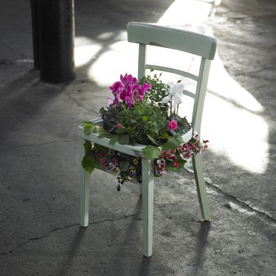 rustoleum_chalky_furniture_paint_laurel_chair