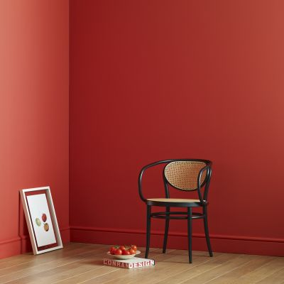 Conran_Paints_Squashed_Tomato