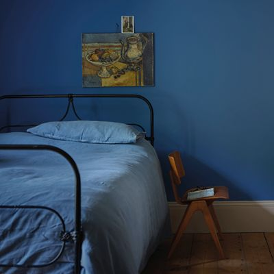 Farrow & Ball Colour by Nature - Ultra Marine Blue