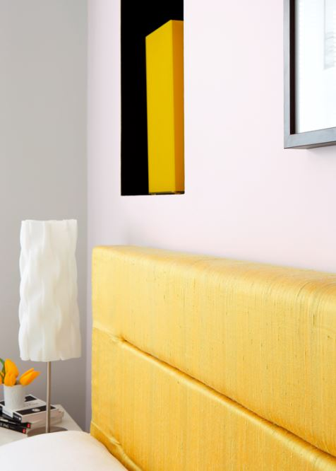 Albany's inspirational new paint colours have arrived!