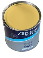 Mild Mustard Paint