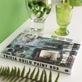 Tricia Guild Paint Box Book